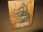 Trofej prvaka rase Vrbas 1996