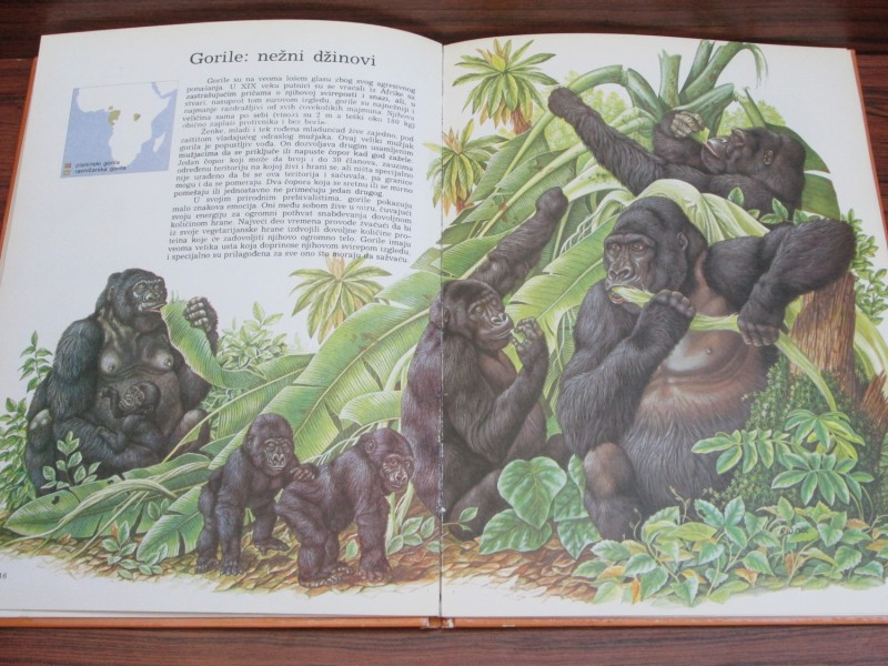 Upoznajte život majmuna