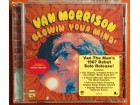 Van Morrison - Blowin` Your Mind!