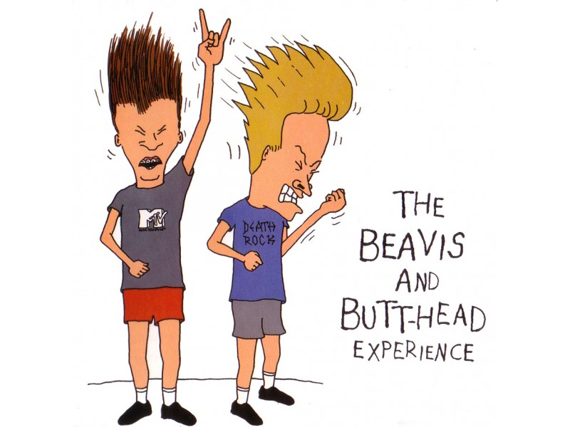 Various - The Beavis And Butt-Head Experience