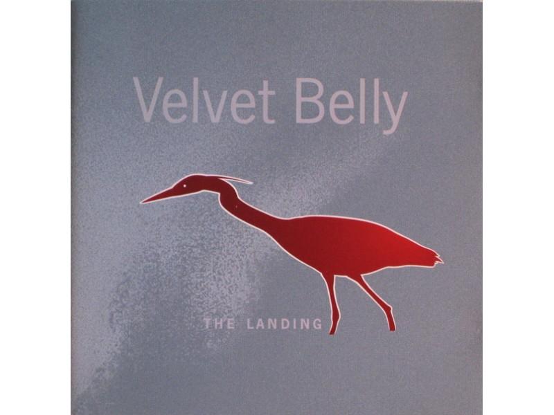 Velvet Belly - The Landing