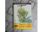 Vinova loza - stone sorte