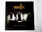 Voodoo X – What Can I Do