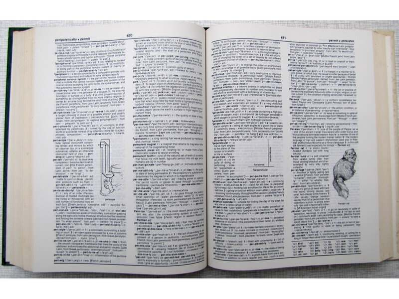 WEBSTER`S SCHOOL DICTIONARY - BRAND NEW EDITION