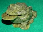 Žaba od žada (nefrita) -simbol bogatstva i prosperiteta