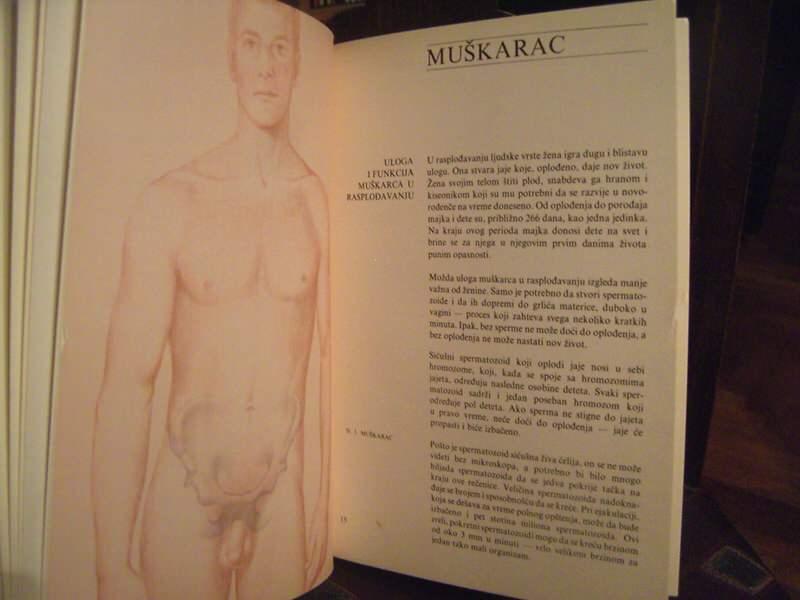 Začeće, rođenje i kontracepcija, mladinska knjiga