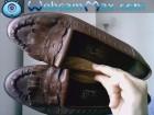 Ženske kožne cipele PEKO