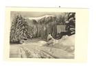 Zima,cb razglednica,1955,putovala.