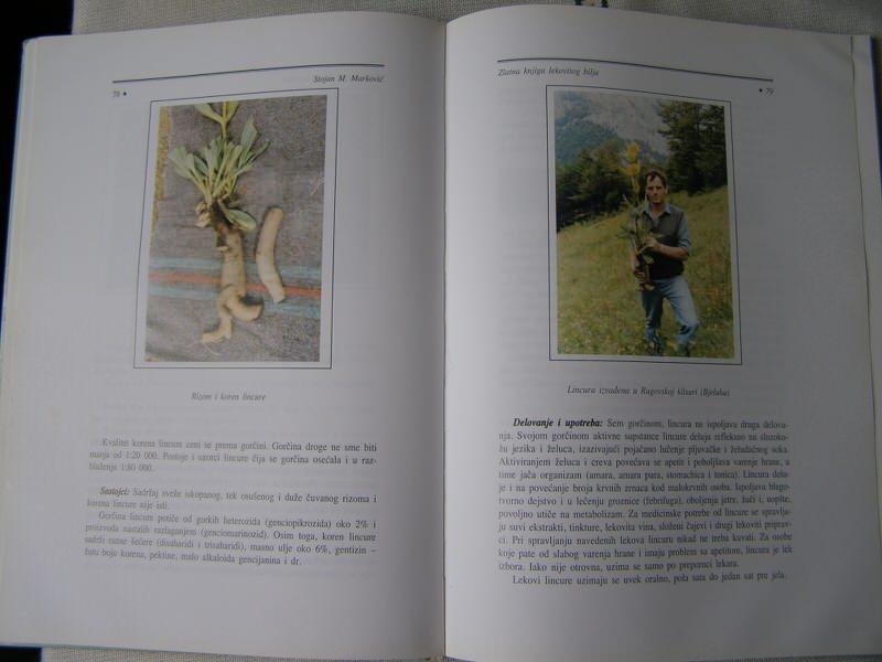 Zlatna knjiga lekovitog bilja - Stojan Marković