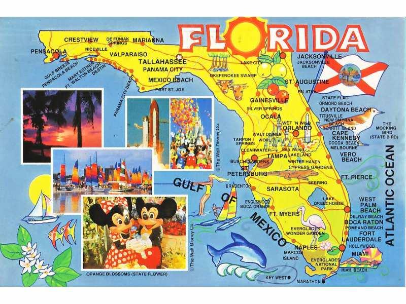 Mapa Florida USA Kupindocom - Mapa florida usa