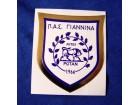 nalepnica Giannina FC