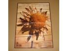 poster iz lista Naš Dom, 1979 kalendar