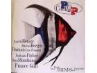razni izvodjaci - POP Couture - Music Neue TRENDS aus Frankreich