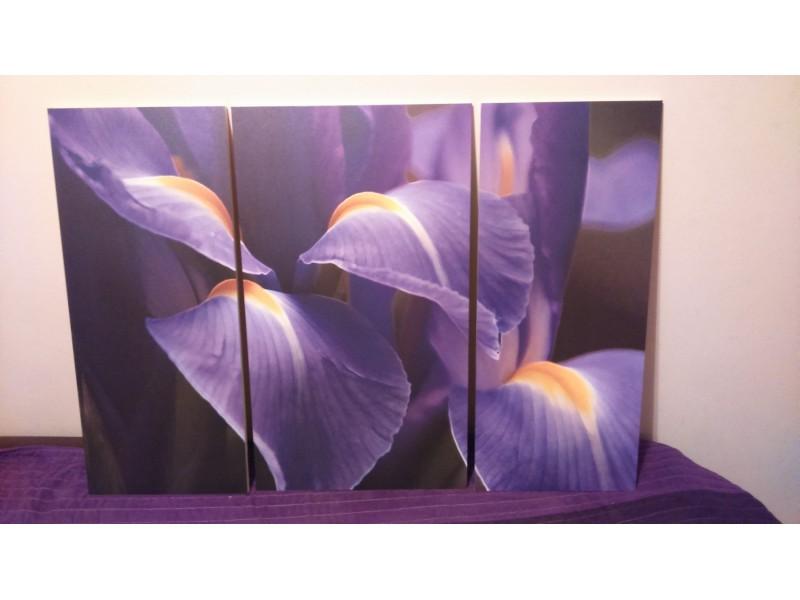 slike za zid iz tri dela,novo,najpovoljnije