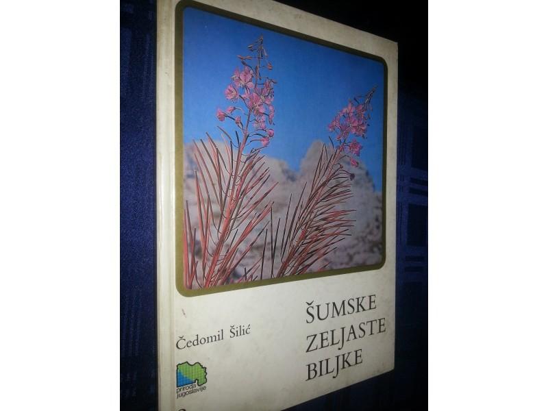 sumske zeljaste biljke
